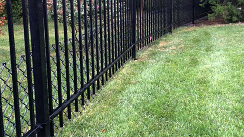 Pet Mesh on Fence